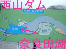 西山ダム 奈良田湖