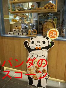 パンダのスコーン