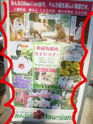 動植物園内ガイドツアー