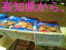 高知県から、