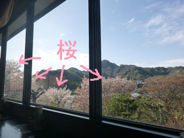 テーブル席から望む景色
