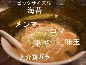 魚介鶏ガラ ラーメン
