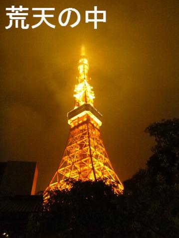 荒天の中(東京タワー)