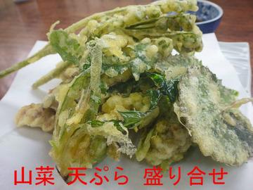 山菜 天ぷら 盛り合せ