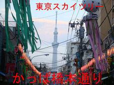 かっぱ橋本通りと東京スカイツリー