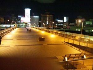 上野駅 パンダ橋