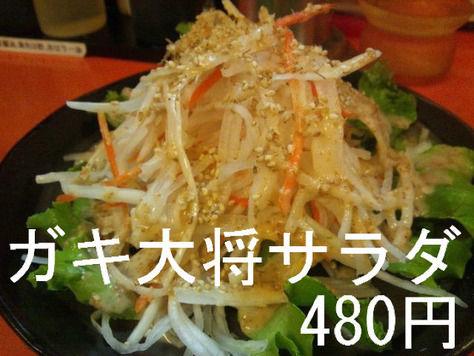 ガキ大将サラダ 480円
