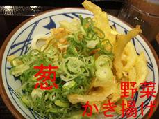 野菜かき揚げ、葱