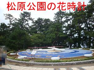 松原公園の花時計