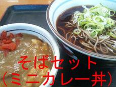 そばセット(ミニカレー丼)
