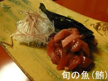 旬の魚(鮪)