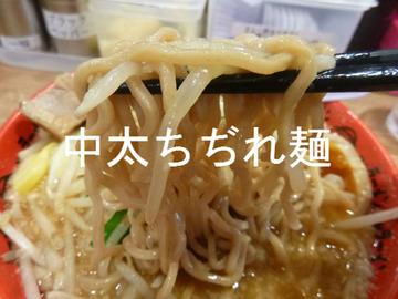 味噌子豚野郎の中太ちぢれ麺