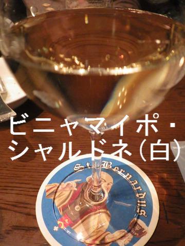 ビニャマイポ・シャルドネ(白)