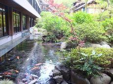 庭園にある池