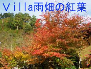 Villa(ヴィラ)雨畑の紅葉