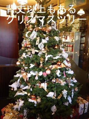 背丈以上もあるクリスマスツリー
