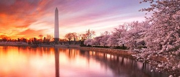 washington-650x278