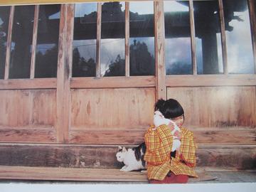 cute-japanese-girl-mirai-chan-kotori-kawashima-39