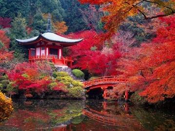 Gardens-of-Kyoto