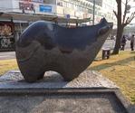 IMG_9471