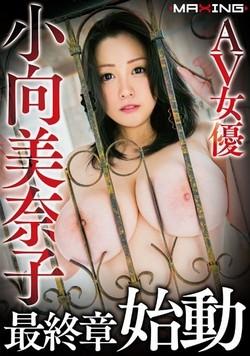 AV女優・小向美奈子作品のパッケージ