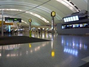20101104