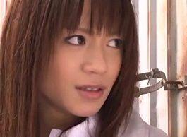 藤井シェリー 敵に捕らえられ三角木馬電マ等でイカセ拷問を受ける潜入捜査官
