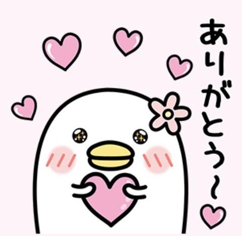 おはようございます(*^o^*)