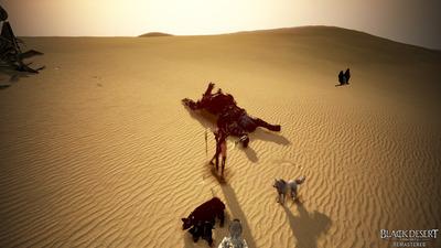 Black_Named_Desert_Fight_003