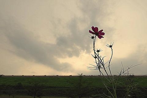 photo-2015-0905-1628-59