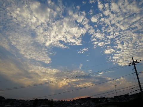 photo-2015-1015-1642-55