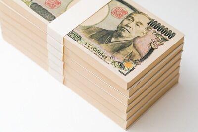 ワイフリーター四十歳、借金してFX三千倍で三億円手に入れる