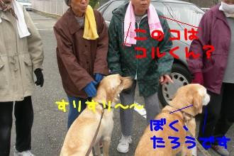 iyashi-kens