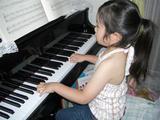 ピアノ弾き