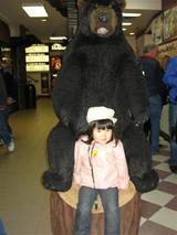 バンフ 熊