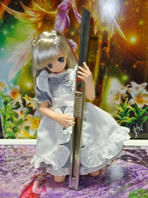 銀ひめの 灰アリス服 025 - コピー