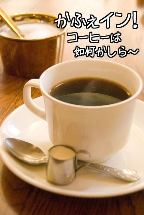 コーヒーは如何かしら