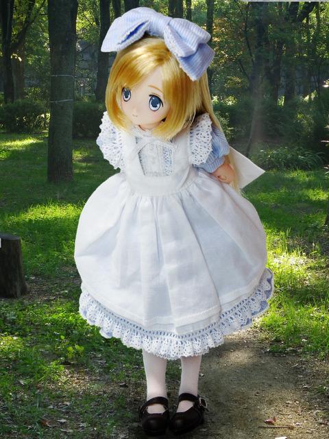 アリスは森の中へ7
