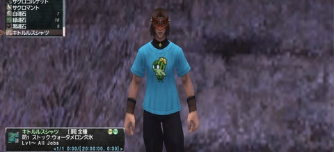 キトルルスシャツ 1