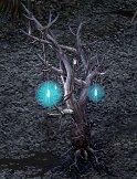 DECの木