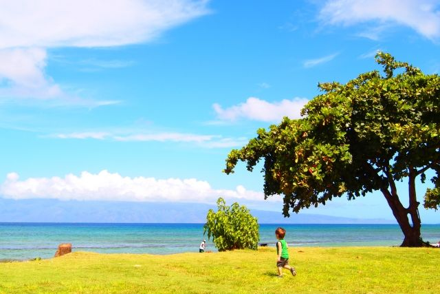 ハワイ夏休みマウイ島
