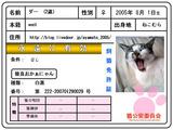飼猫免許証