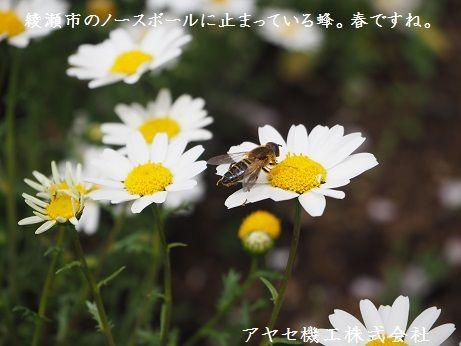 シャープ蚊取空清 虫 アヤセ機工 (2)