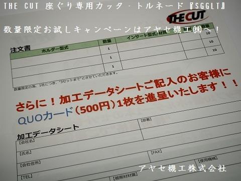 ザカット ザグリカッターSGLTキャンペーン アヤセ機工 (3)