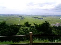大森山の展望台から見える風景。