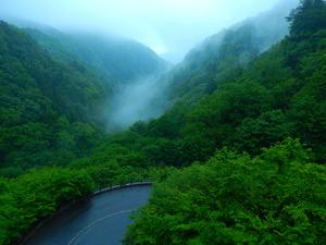 霧が立ち上る谷