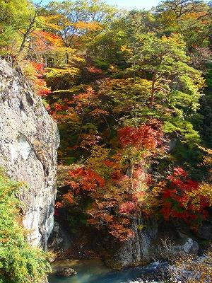 鹿股川の紅葉その1