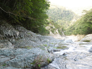 柱状摂理の川底