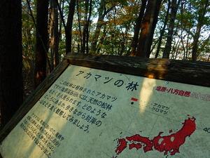 渓谷遊歩道「回顧コース」