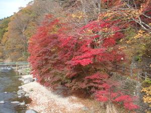 紅のつり橋左側